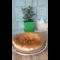 Фото Пасхальный пирог